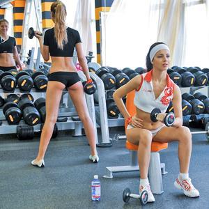 Фитнес-клубы Нижнедевицка
