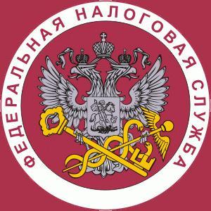Налоговые инспекции, службы Нижнедевицка