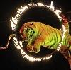 Цирки в Нижнедевицке