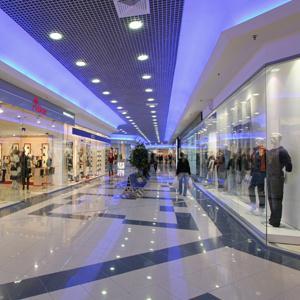 Торговые центры Нижнедевицка